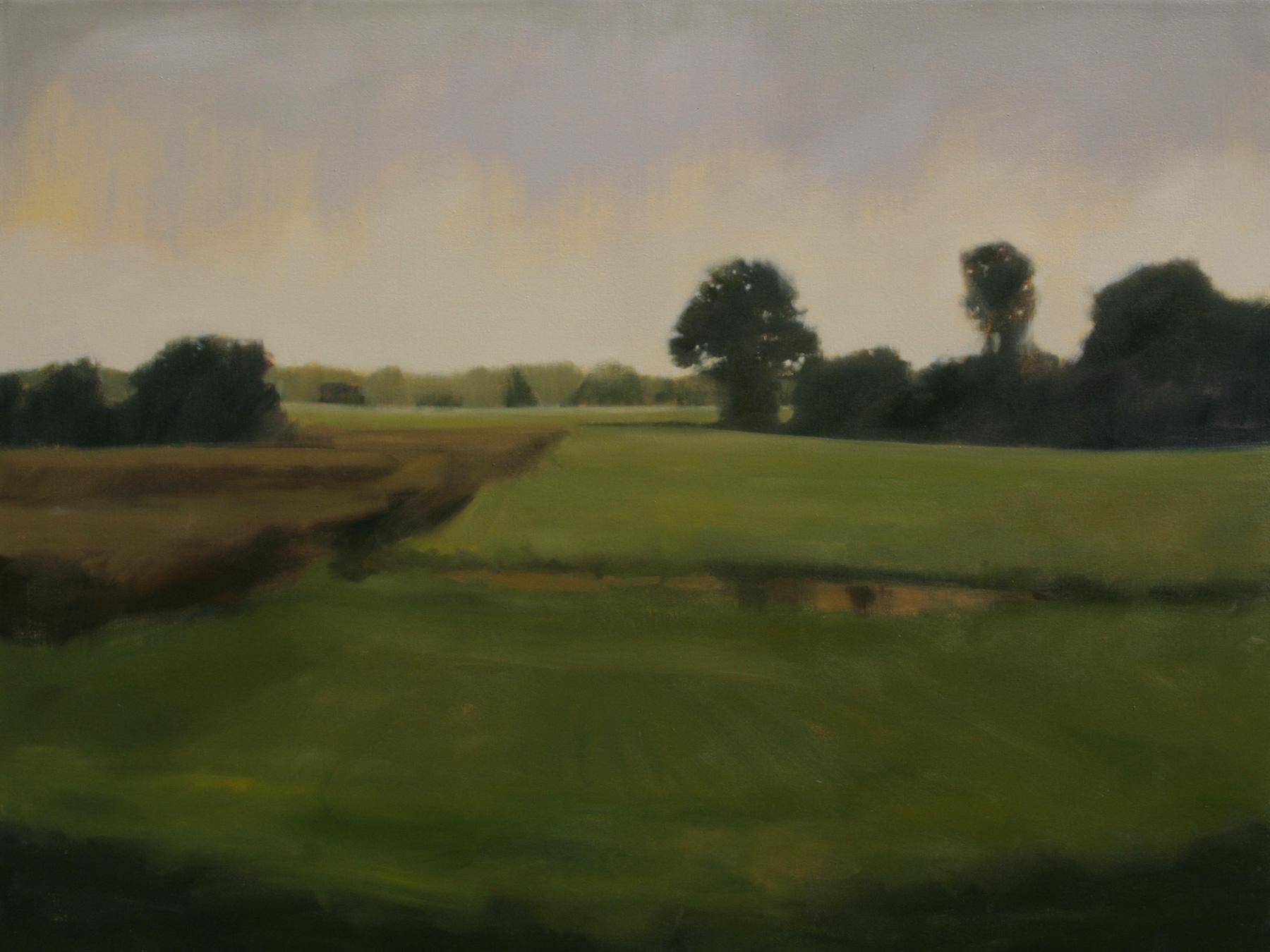"""Farm Memory  2012, oil on canvas, 36 x 48"""""""