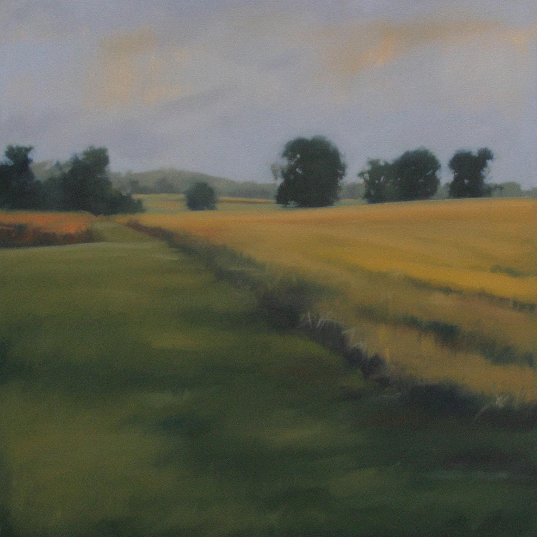 """Quiet Summer oil on canvas, 36""""x36"""""""