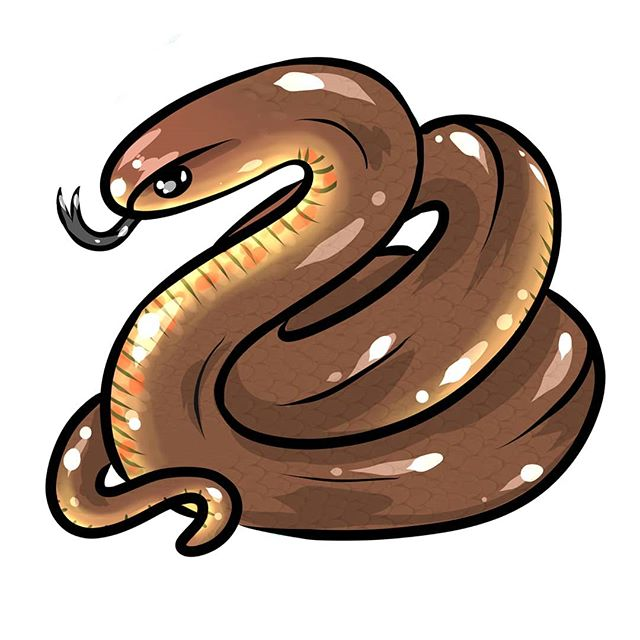 I really liked how my eastern brown snake came out for  @canberra_snake_rescue  Canberra snake rescue. They have pretty little spots on their bellies ♥️♥️♥️ To protect my marriage I've agreed not to own any snakes, so snake projects get my extra special attention 😉😂😂😂 ... ... ... #snakelovers #mascot #logo #snake #snakemom #snakerescue #reptiles #reptilelovers  #reptilemom  #reptile #coldblooded #ary #illustration  #illustrator  #artwork #drawing #painting #ink #tattoos  #tattooart #graphicdesign #cute #cuteaesthetic #commissionsopen  #commissiondrawing #commission #artcommission