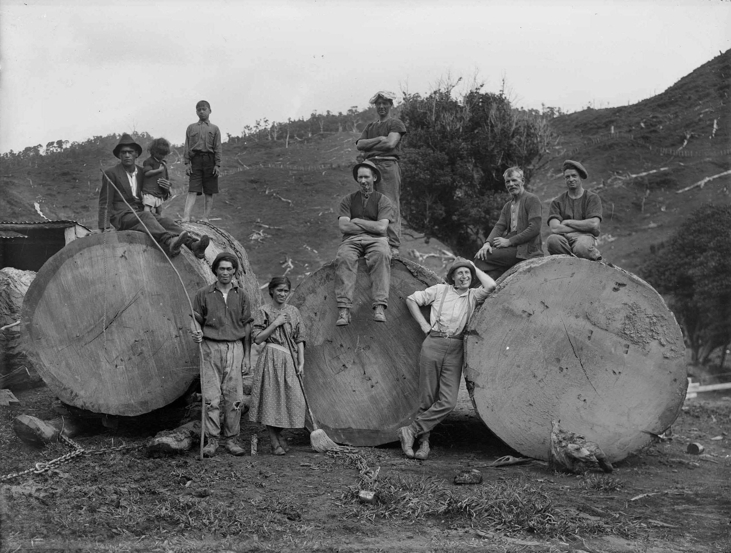 Kauri logging gang 1840s