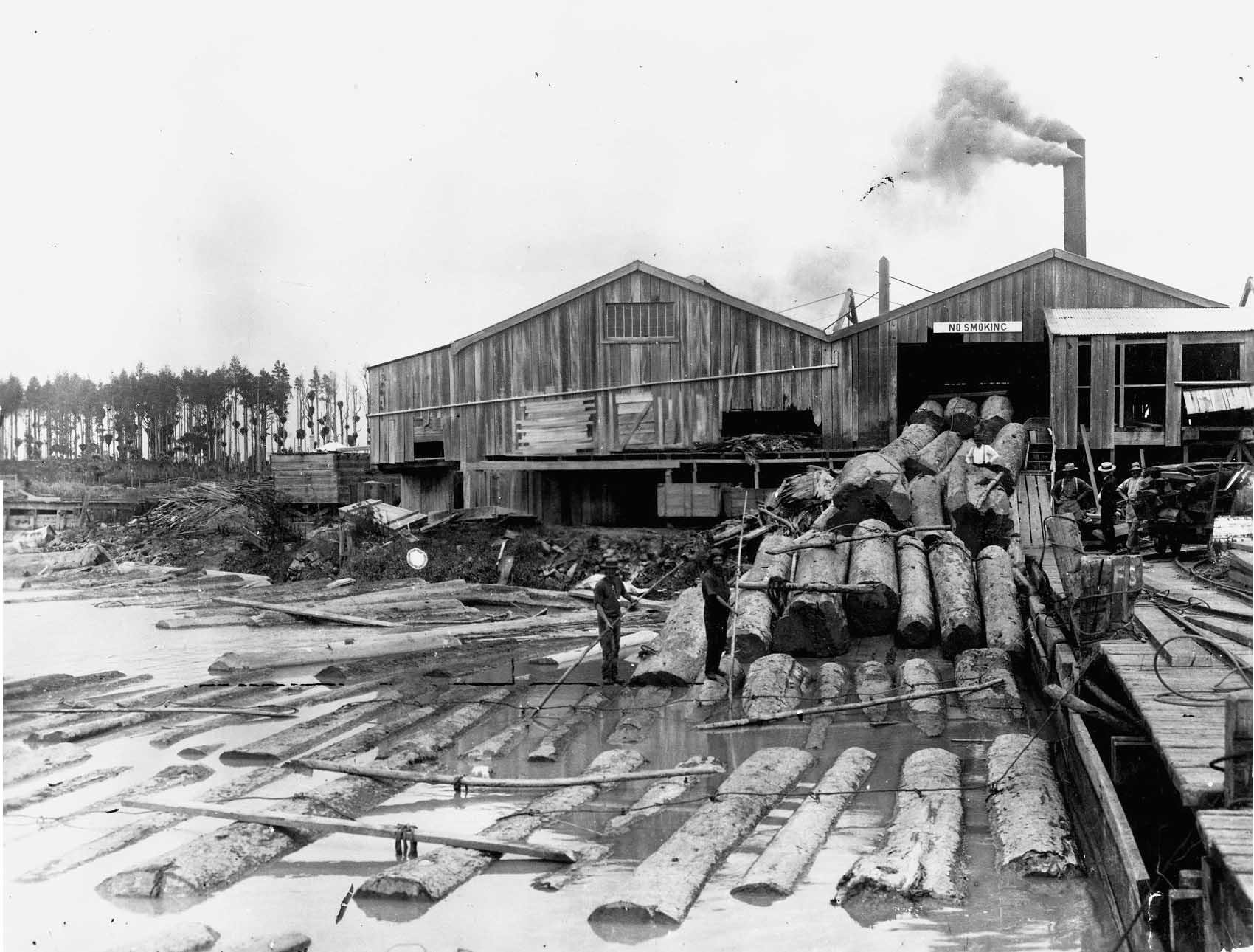 Aoroa timber mills, Wairoa River Date: 1900
