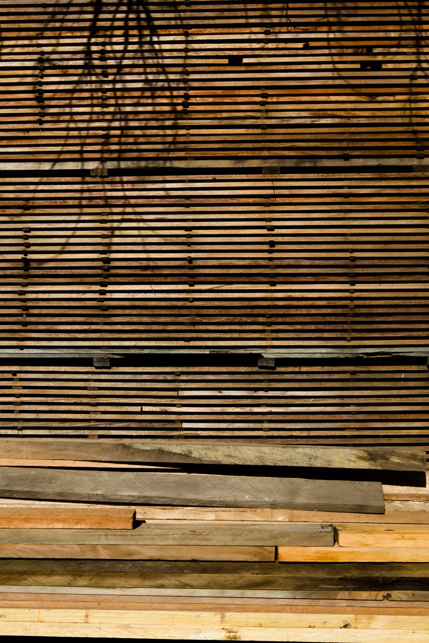 Timber workers, Northland-28.jpeg