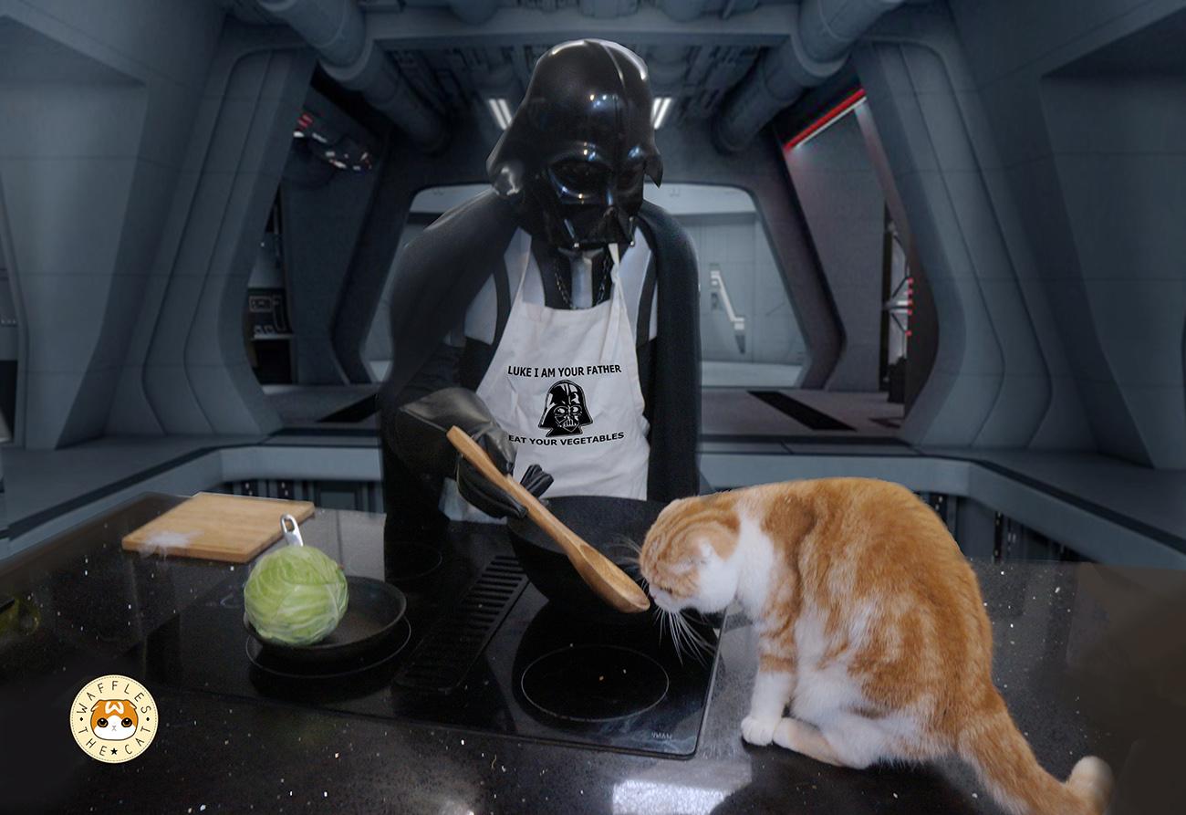 !kitchen.jpg
