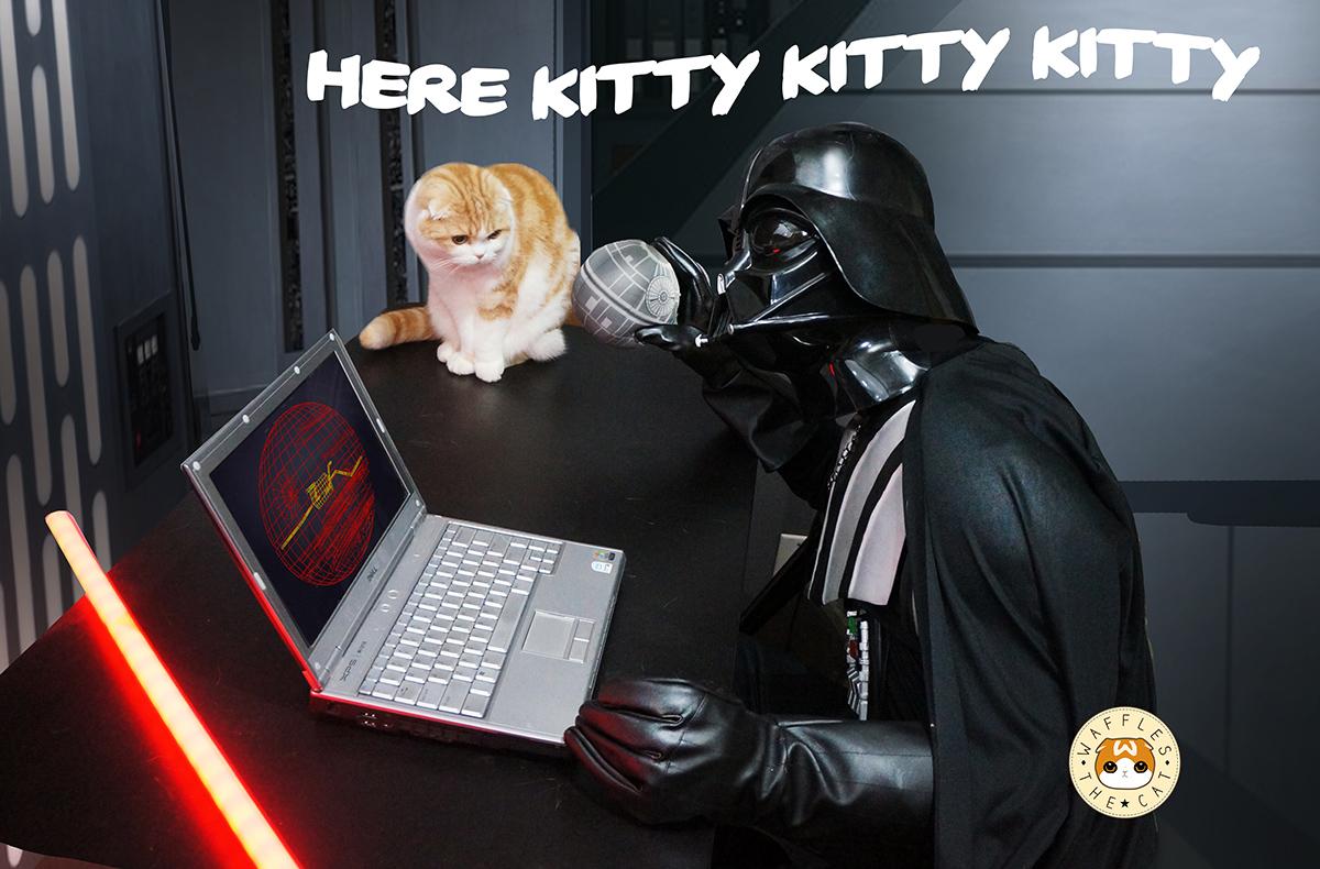!laptop555.jpg