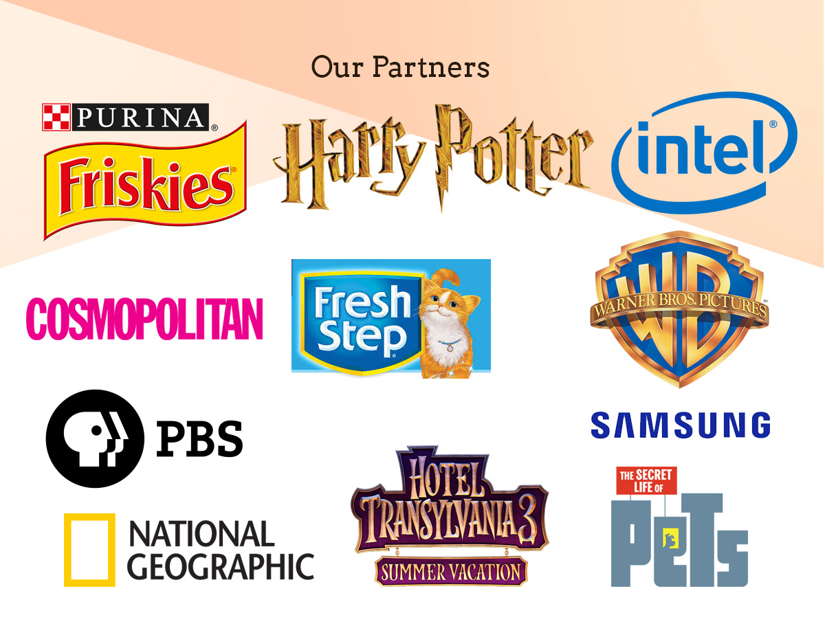 we have worked with purina friskies, clorox fresh step, warner brothers pictures, national geographic, pbs nature, samsung, cosmopolitan, hotel transylvannia, secret life of pets, universal pictures and illumination.