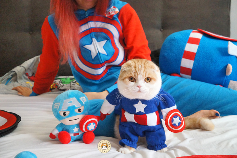 Yes my mommy is embarassing and owns too many Avengers things. Photo Source:  https://instagram.com/waffles_the_cat/