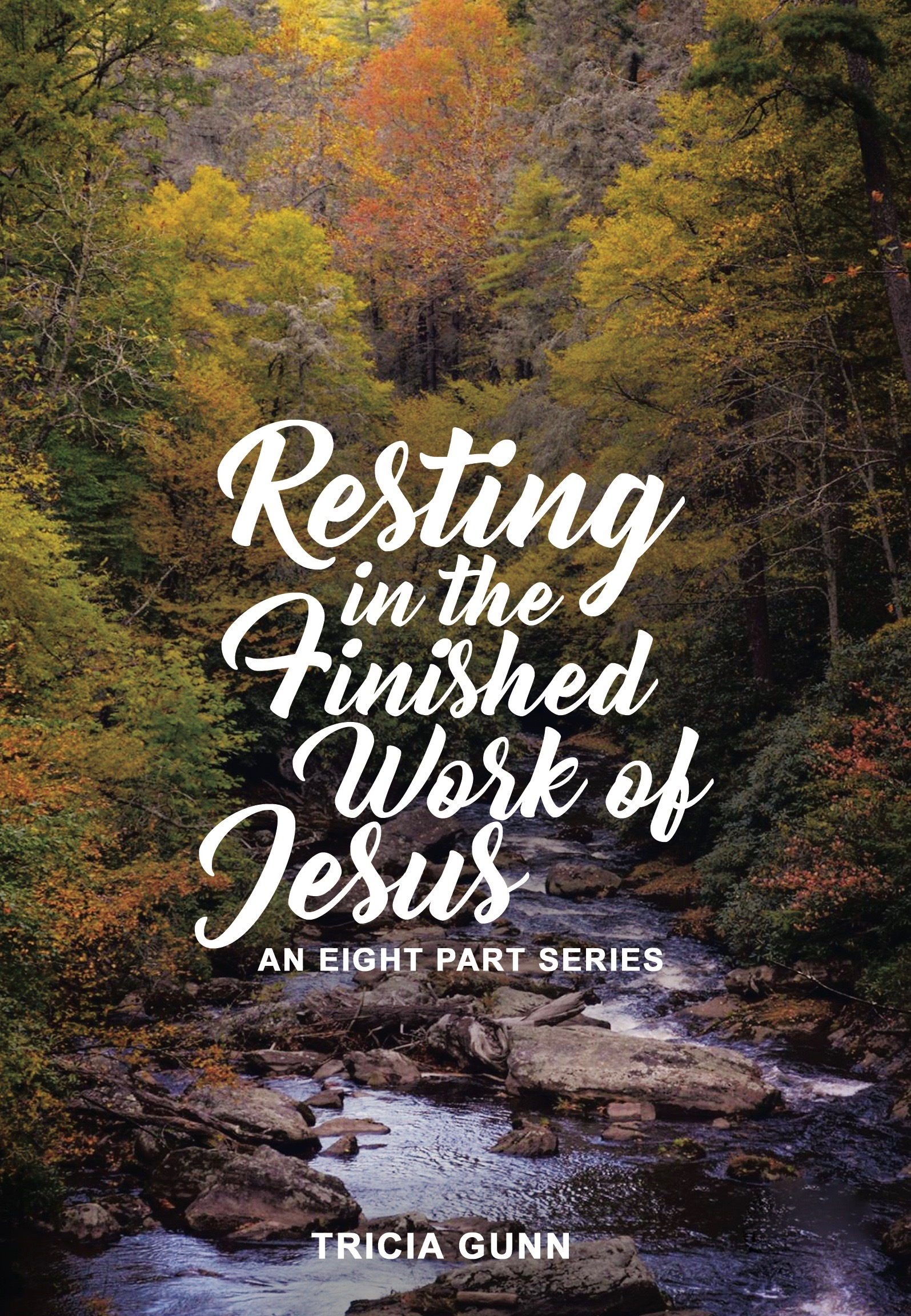 Resting-In-The-Finished-Work-of-Jesus_CD copy 2.jpg