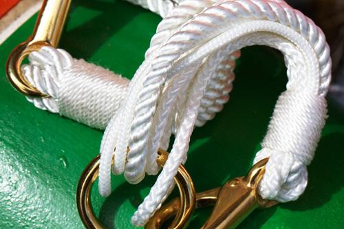 Shana Ready the Ropes