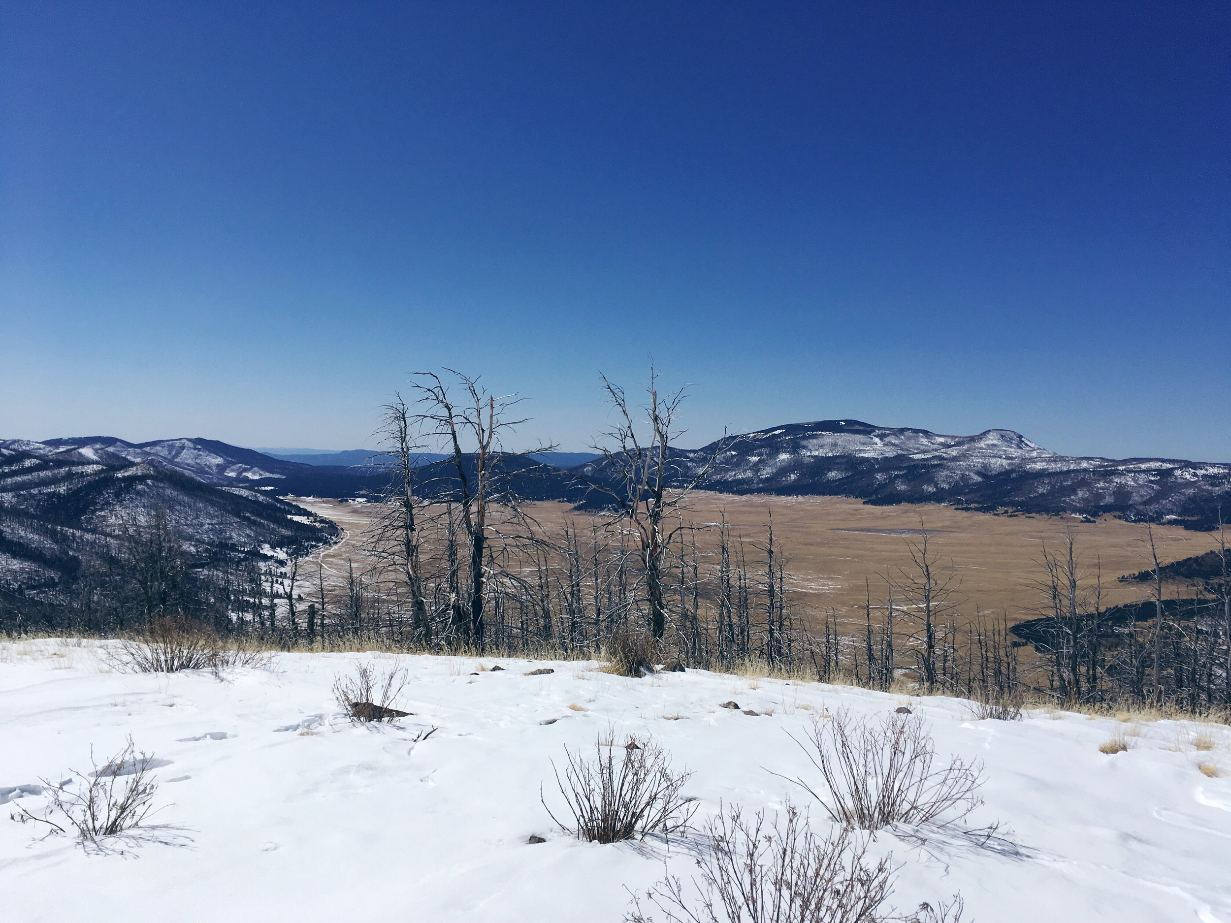 The view looking down on Valles Caldera in late winter. Valles Caldera is one of my favorite places here.