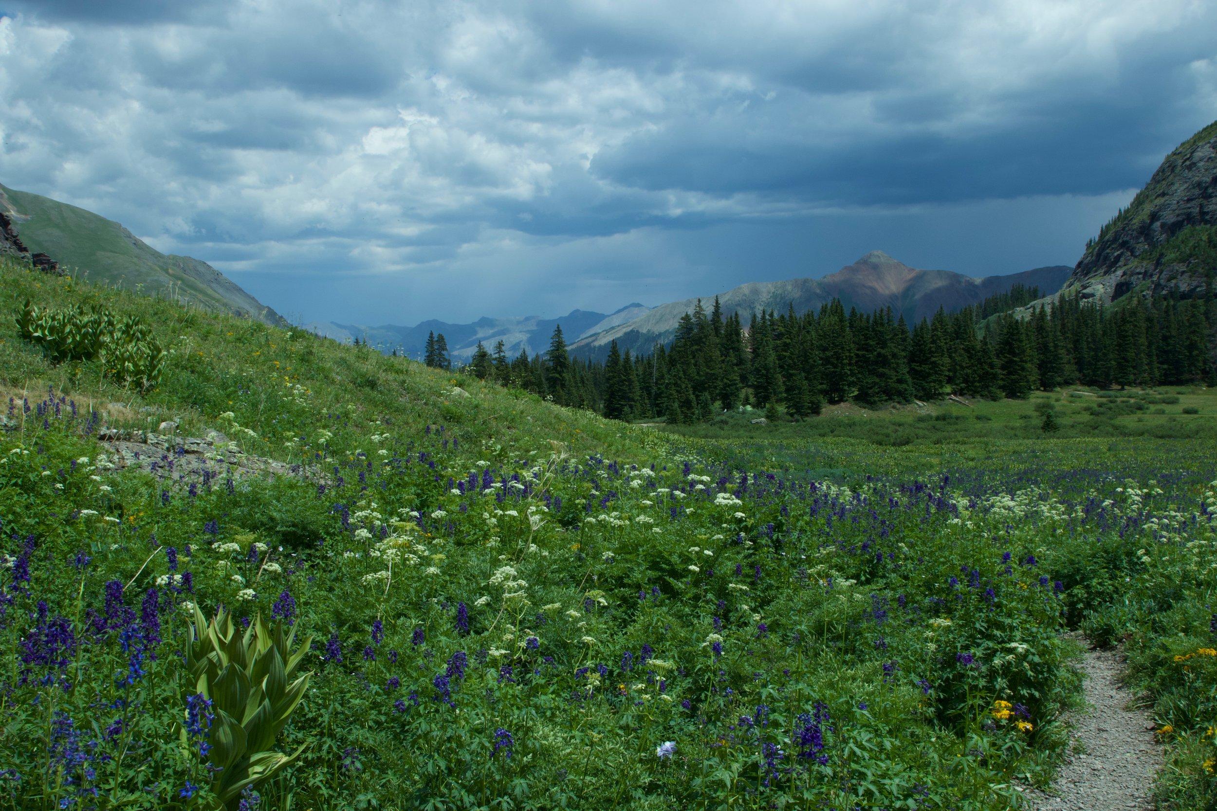 alpine meadow ice lake colorado rebecca mir grady
