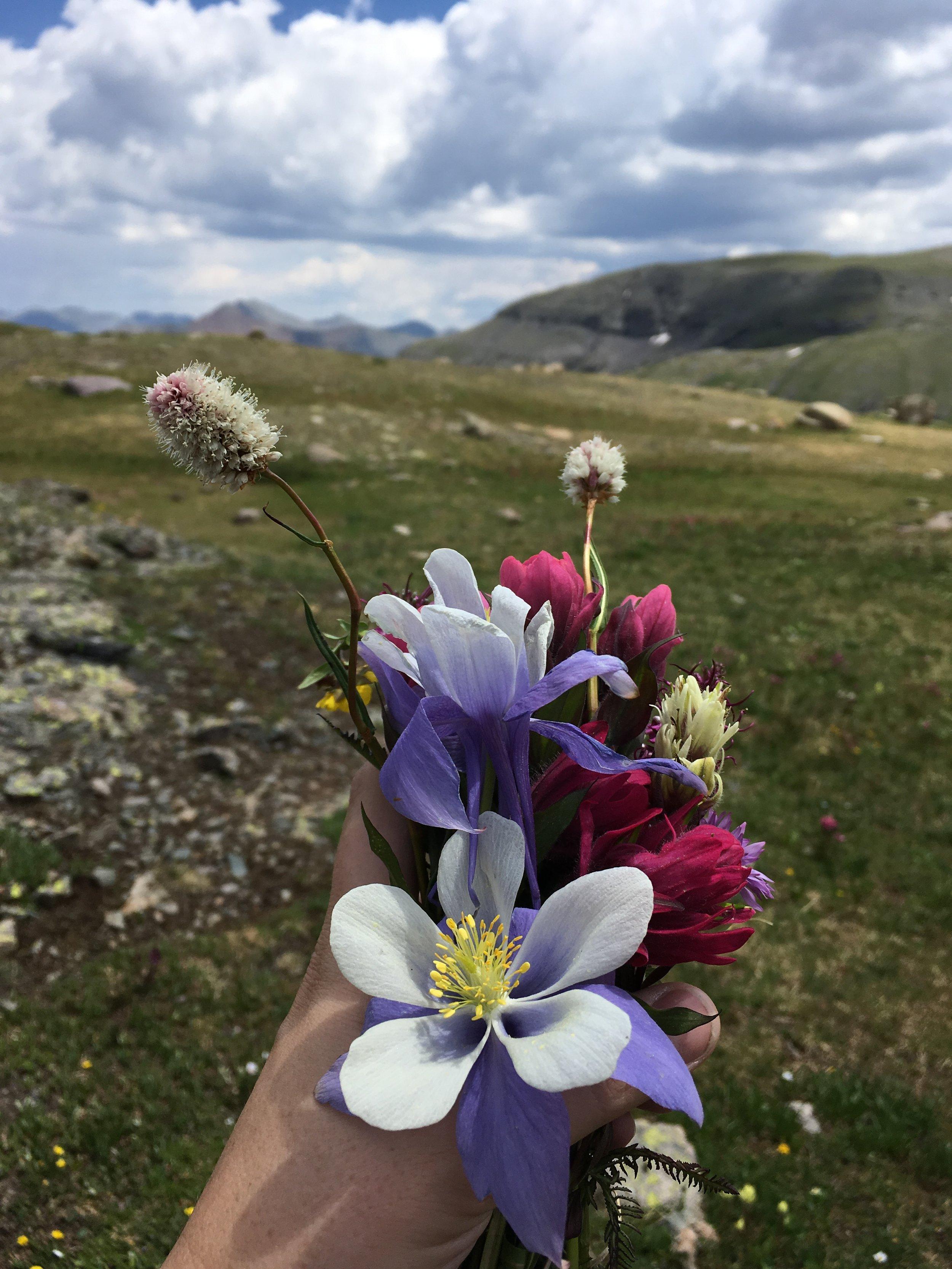 wildflower bouquet ice lake colorado rebecca mir grady