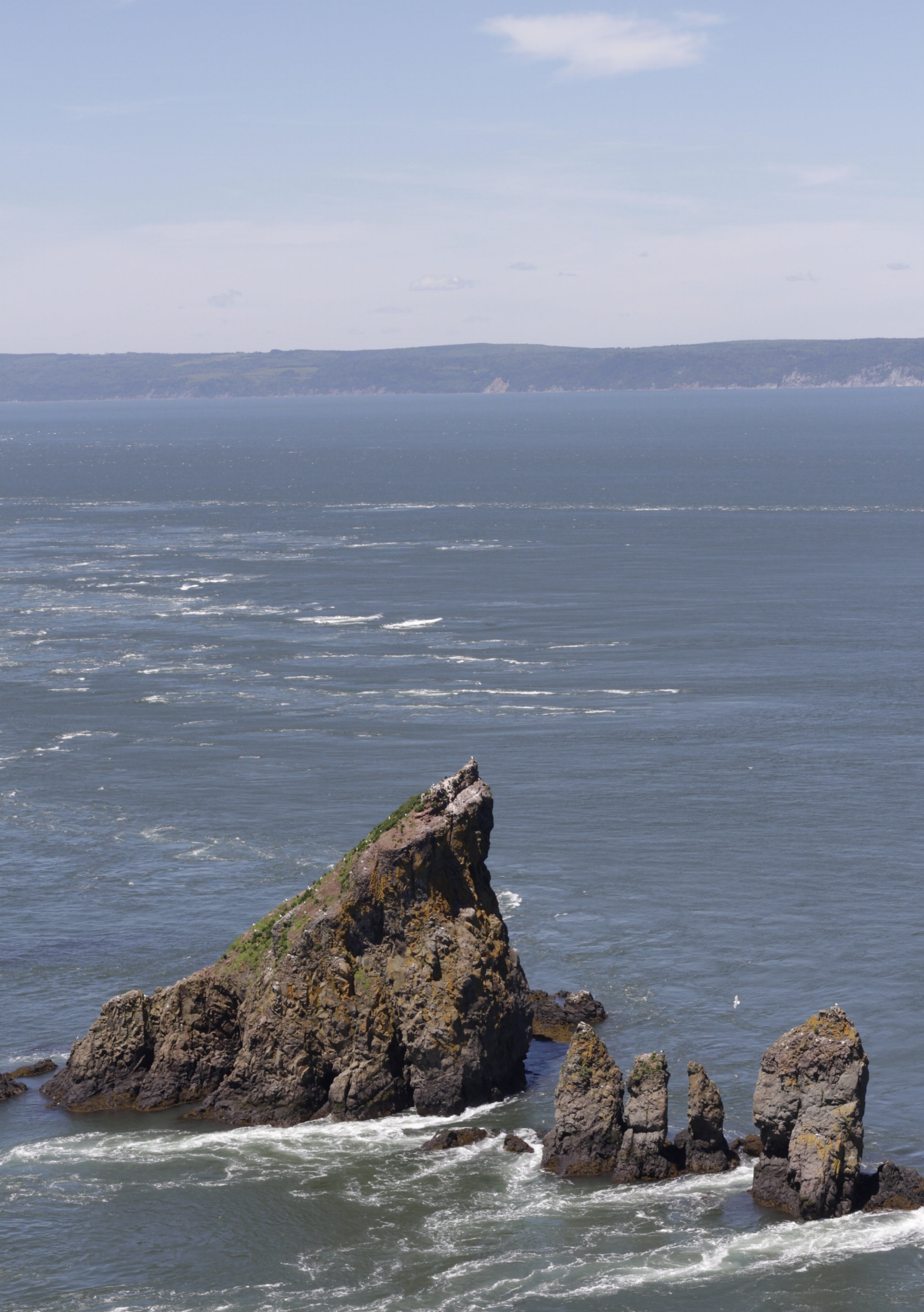 looking out from Cape Split