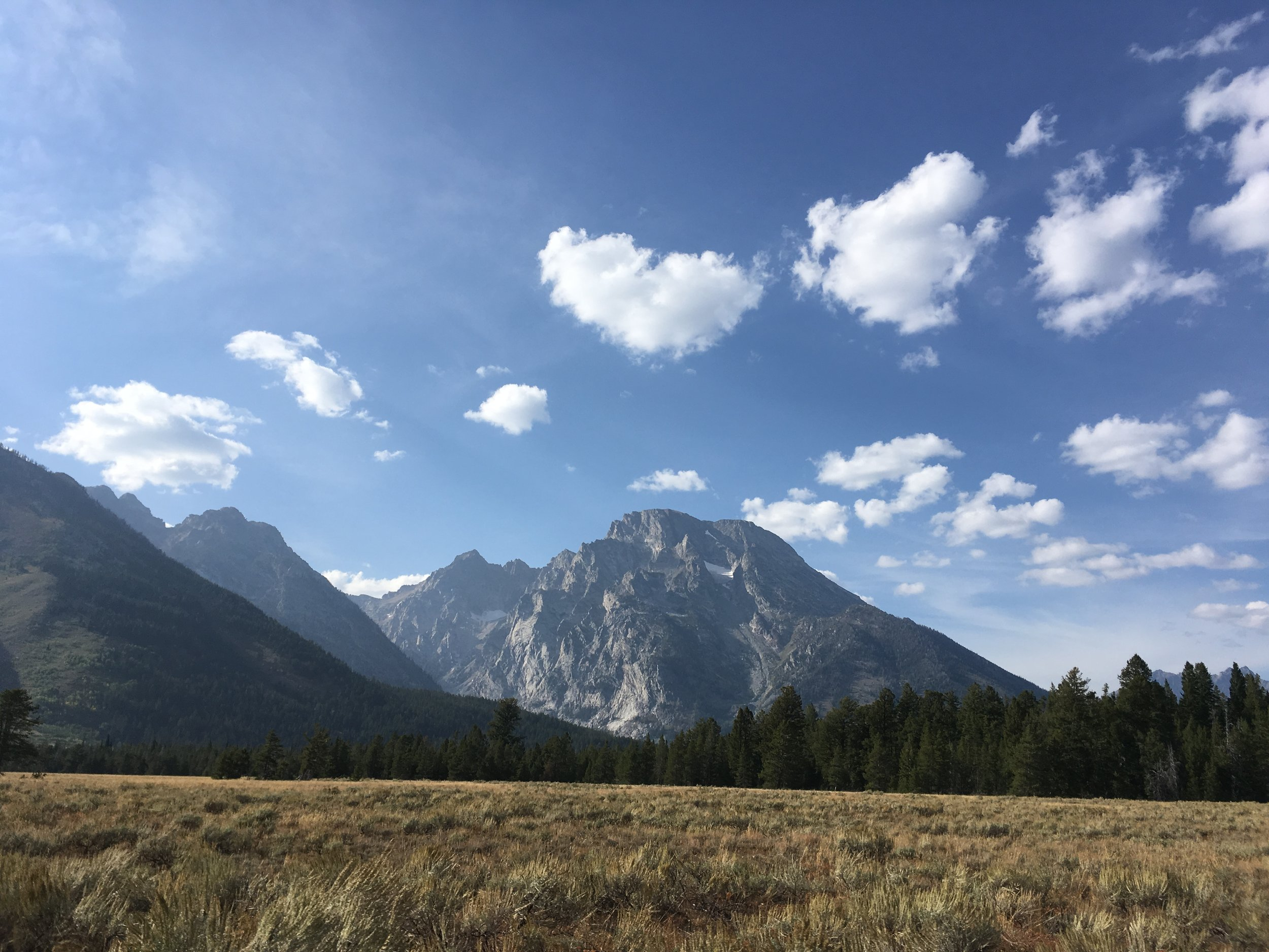 one last look at the Tetons on our way home
