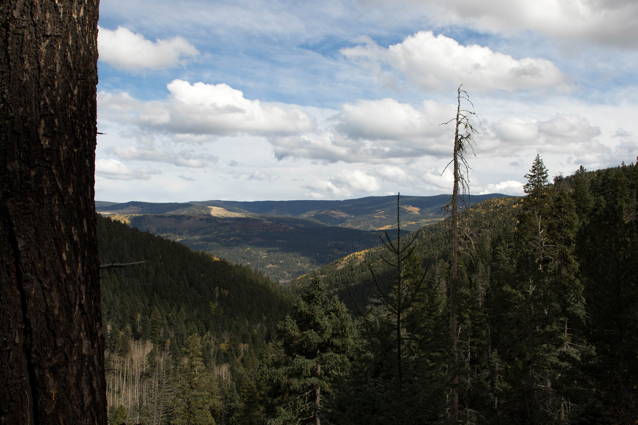 The view from the trail