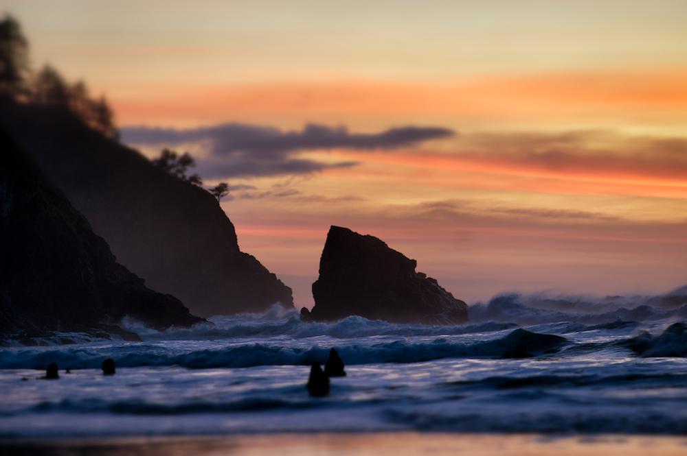 Oregon Snapseed