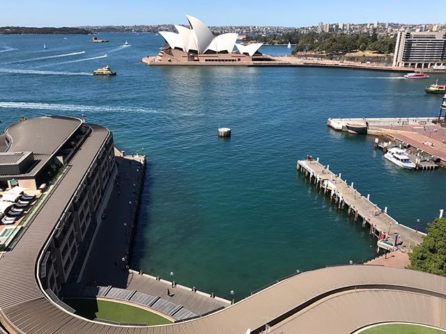 Australia: Day 6. Today we checked into our final hotel and it's incredible. The hotel is actually the building at the bottom of the photo (photo was taken from the bridge above). Our room is one of the rooms that overlooks the opera house. Tonight we came home from exploring and there was a man singing while playing harp... we are definitely not worthy of staying here. Tomorrow is our last day! It's really hard to believe that it's just about over.... #shotoniphone #nofilter #sydney #operahouse #sydneyoperahouse #iphoneonly #iphone7plus