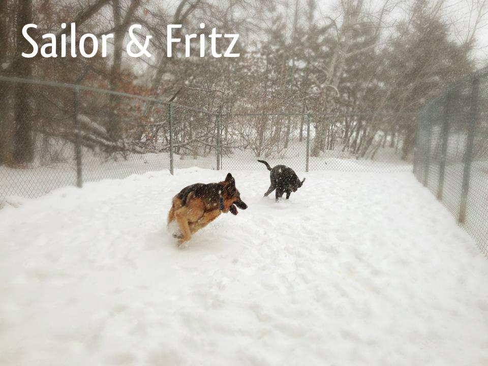 Sailor & Fritz.jpg