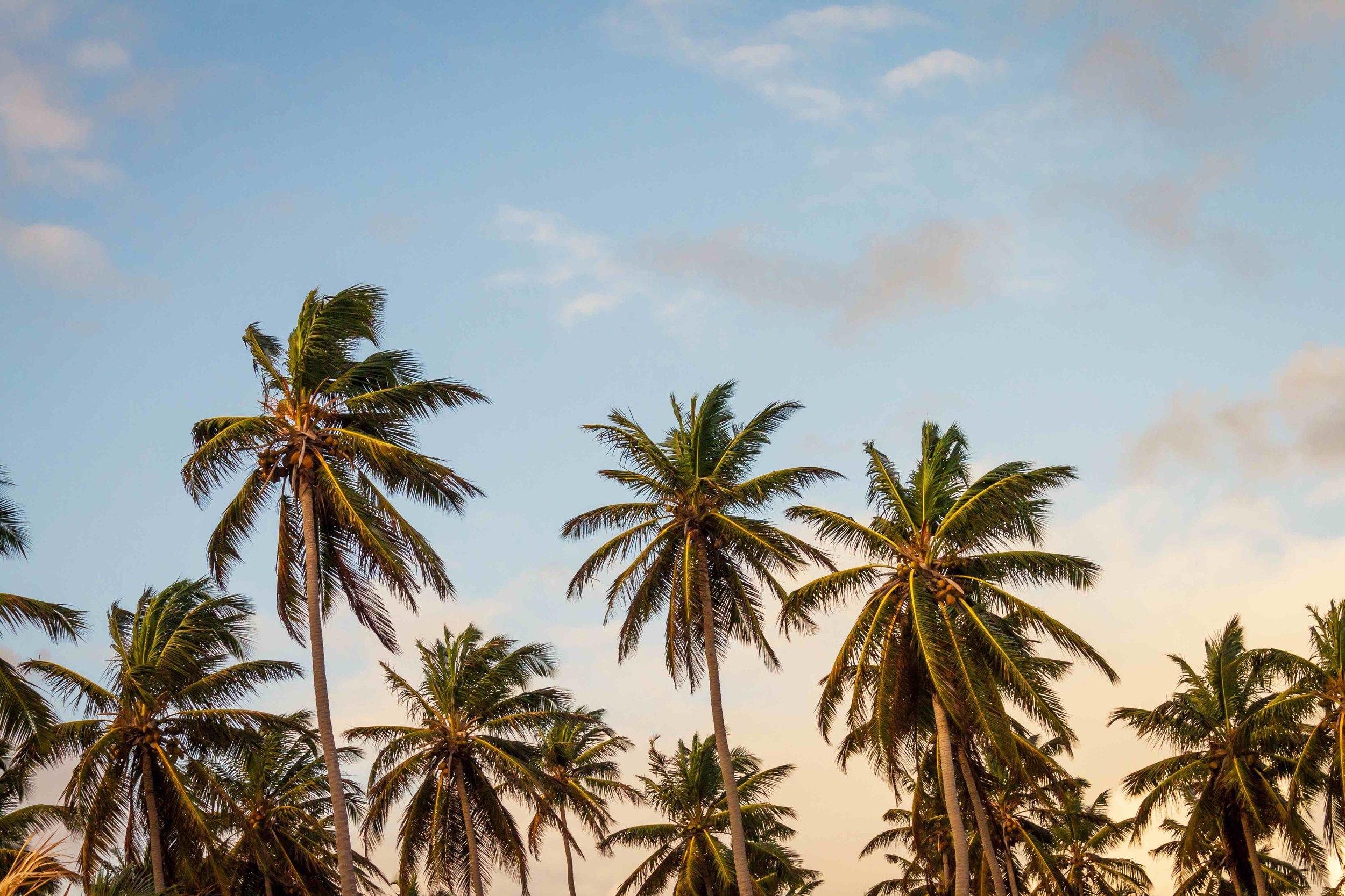 sky-beach-vacation-summer.jpg