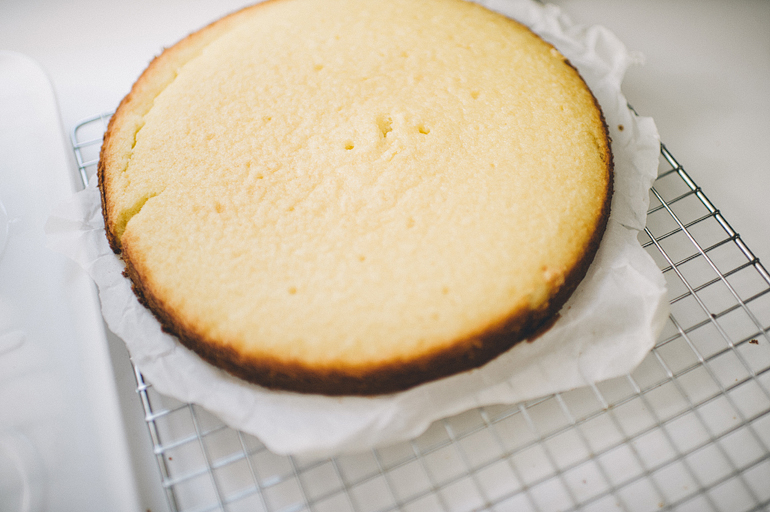 julia_cake03.JPG
