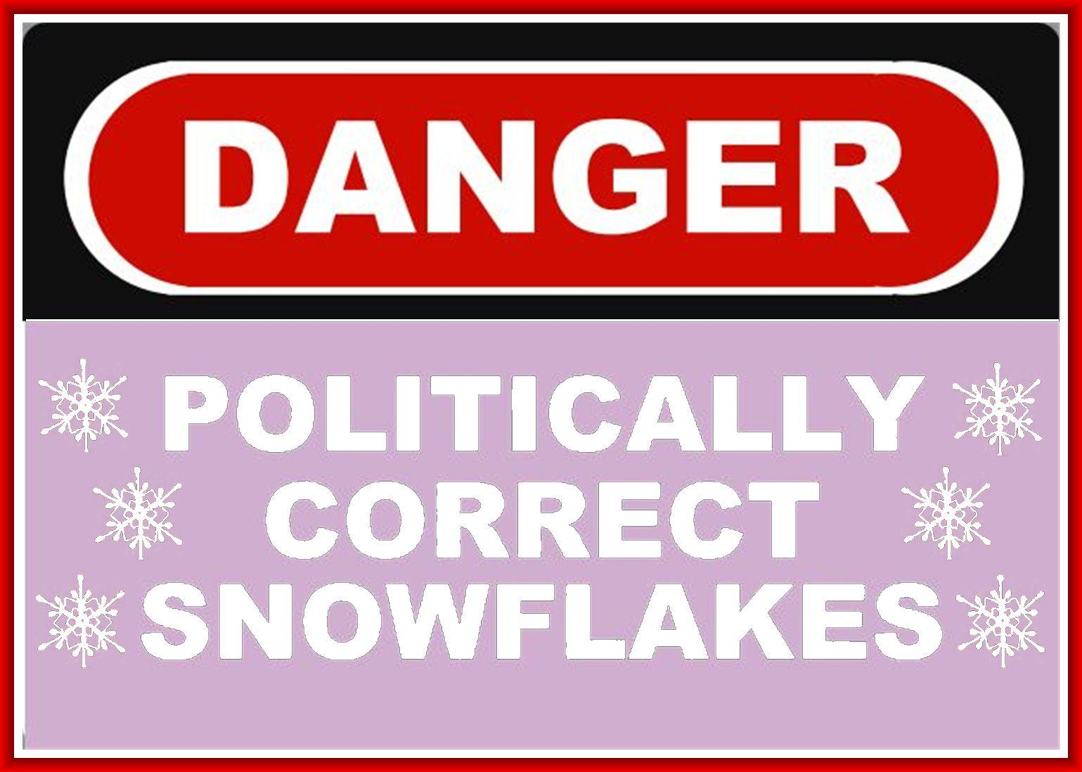 Am I Next? Job Loss, Political Correctness Snowflakes