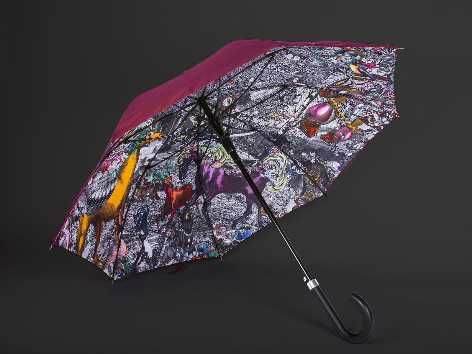KSW Umbrella.jpg