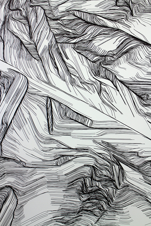 """Detail:  Iona Drawing (burning columns detail),  2017. Pen and ink on paper. 30""""x46"""" each. In collaboration with Clive McCarthy"""
