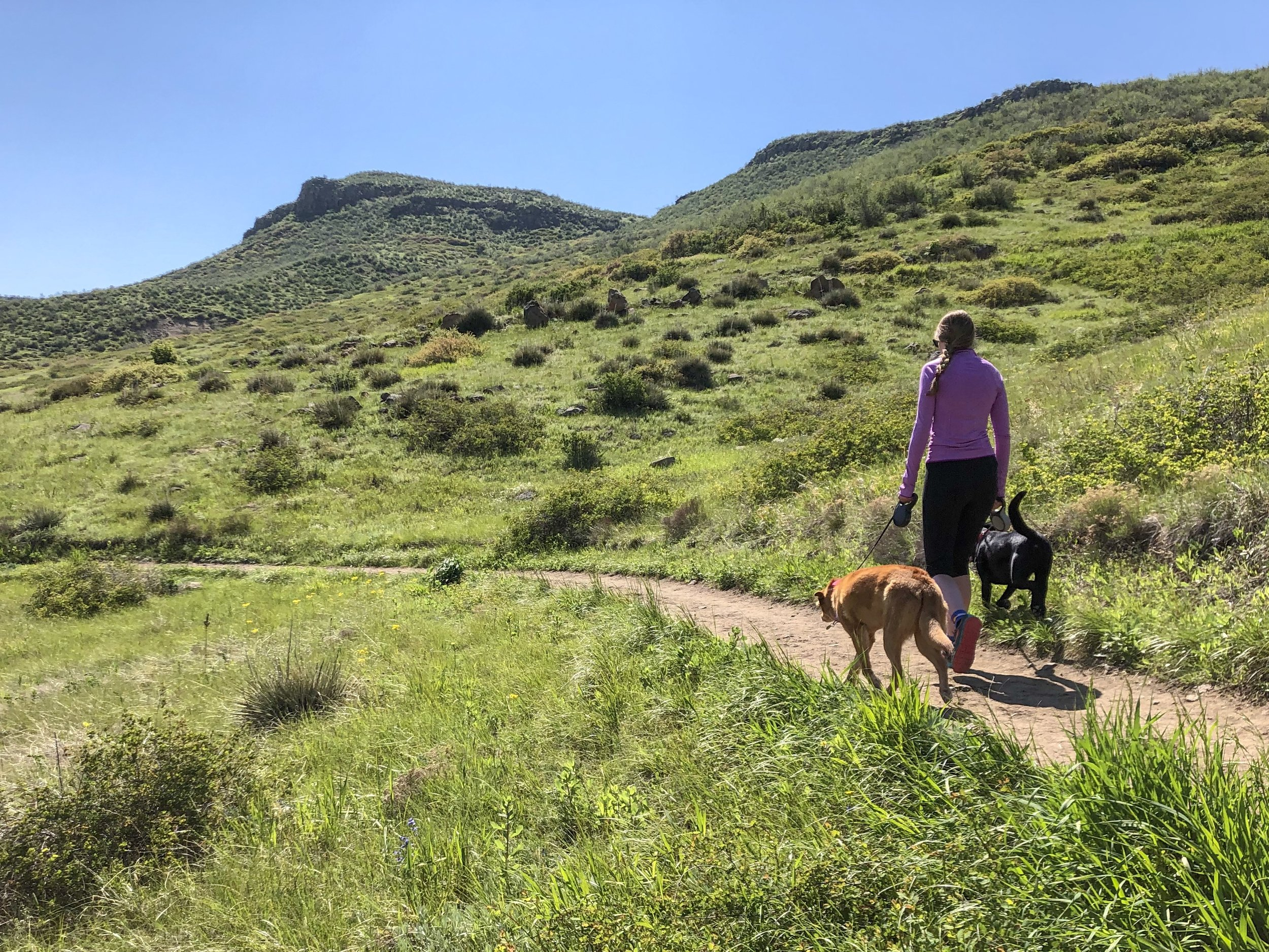 Hiking the sunny North Table Loop at North Table Mountain Park. ©Suzanne Brown