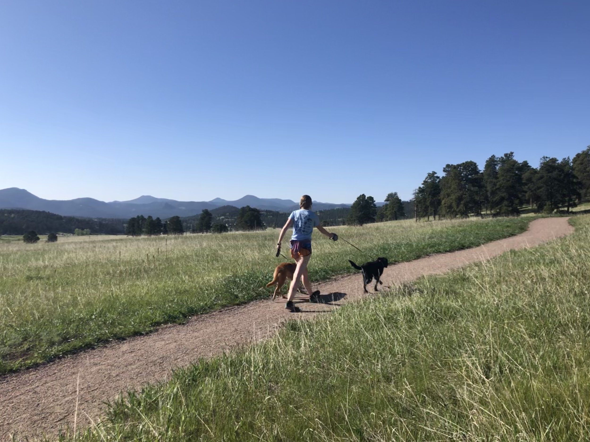Far-reaching views at Elk Meadow on the Meadow View trail. ©Suzanne Brown 2019