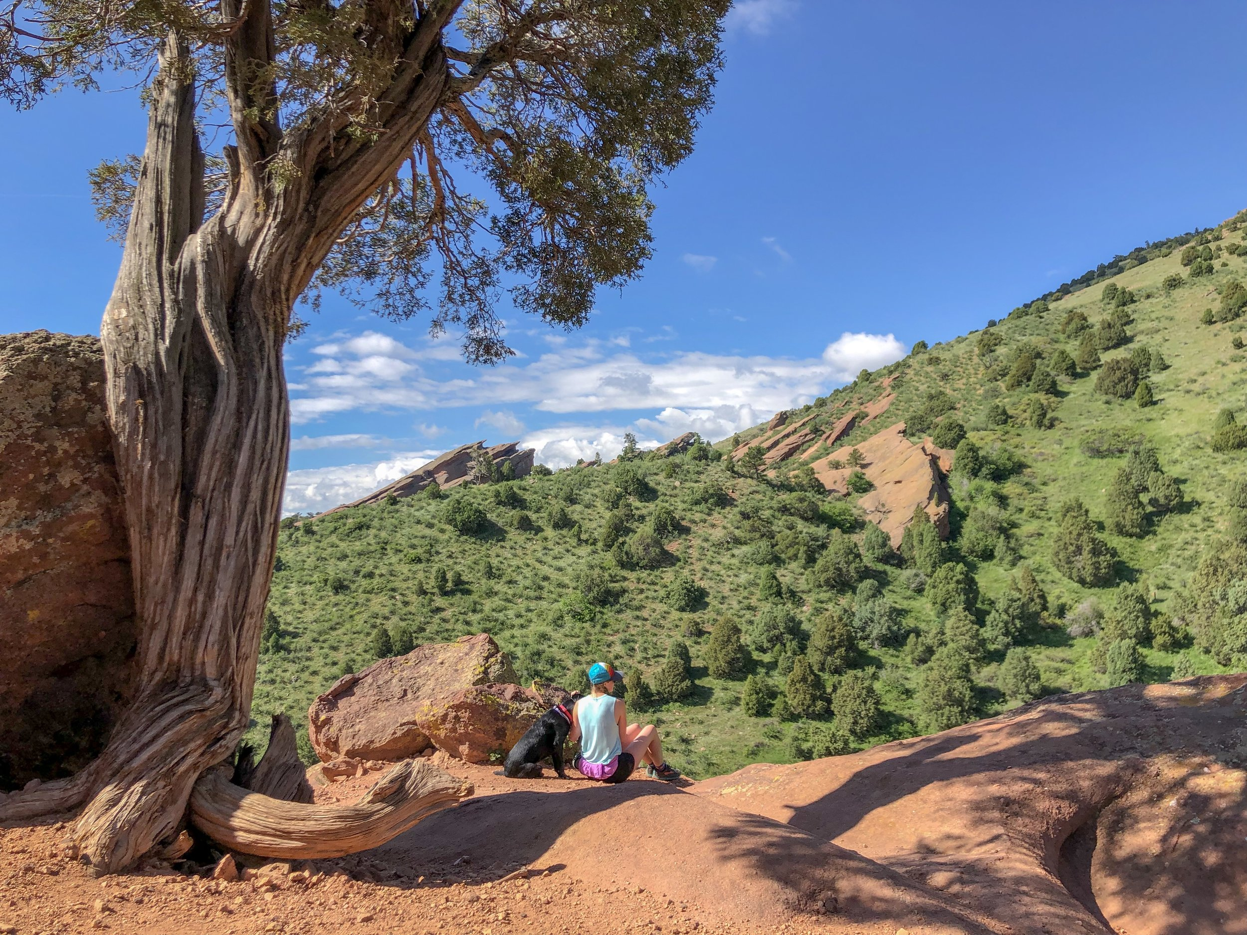 Be sure to stop and soak up the view on the Red Rocks Trail. ©Suzanne Brown 2019