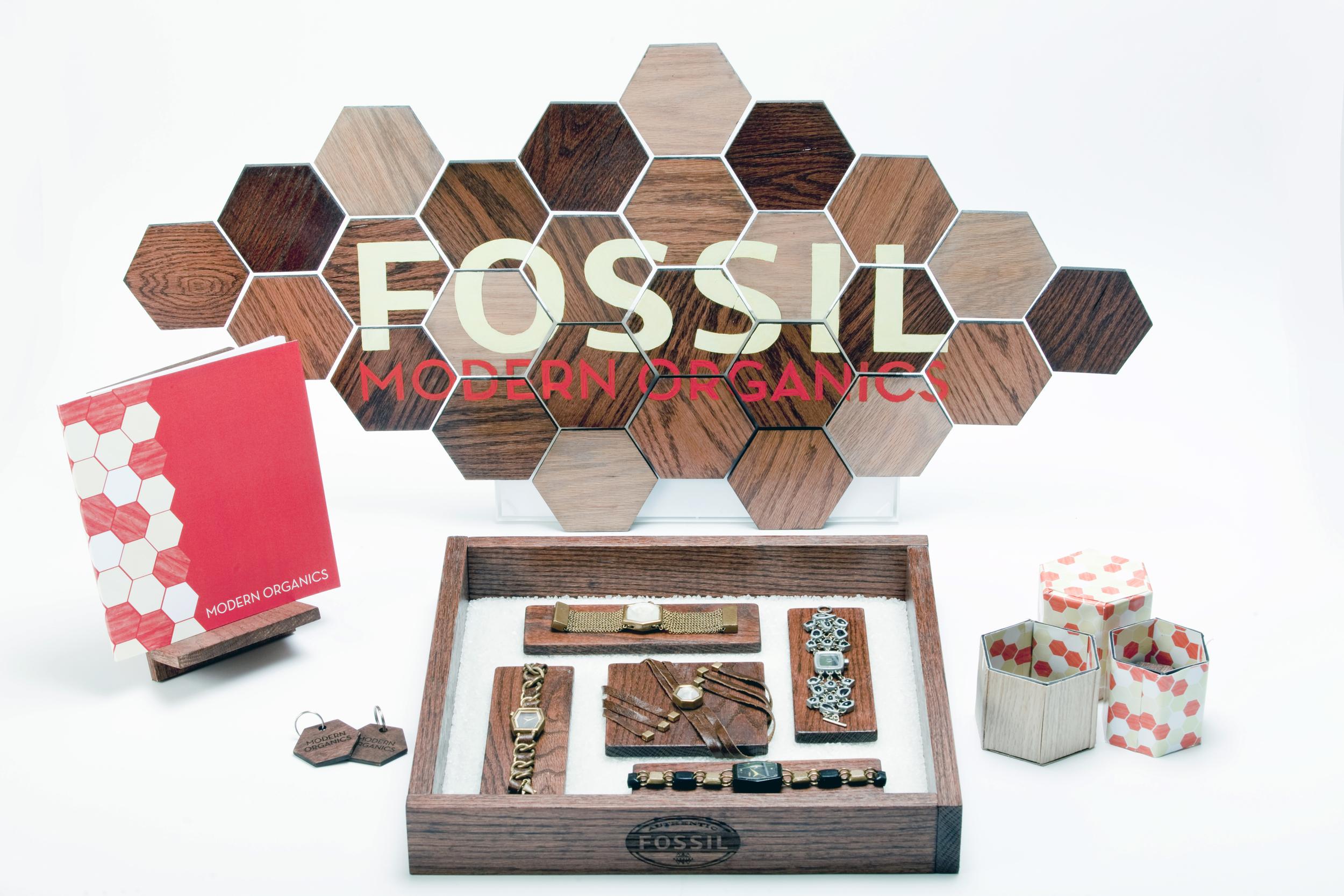 FossilProject_01_DB.jpg