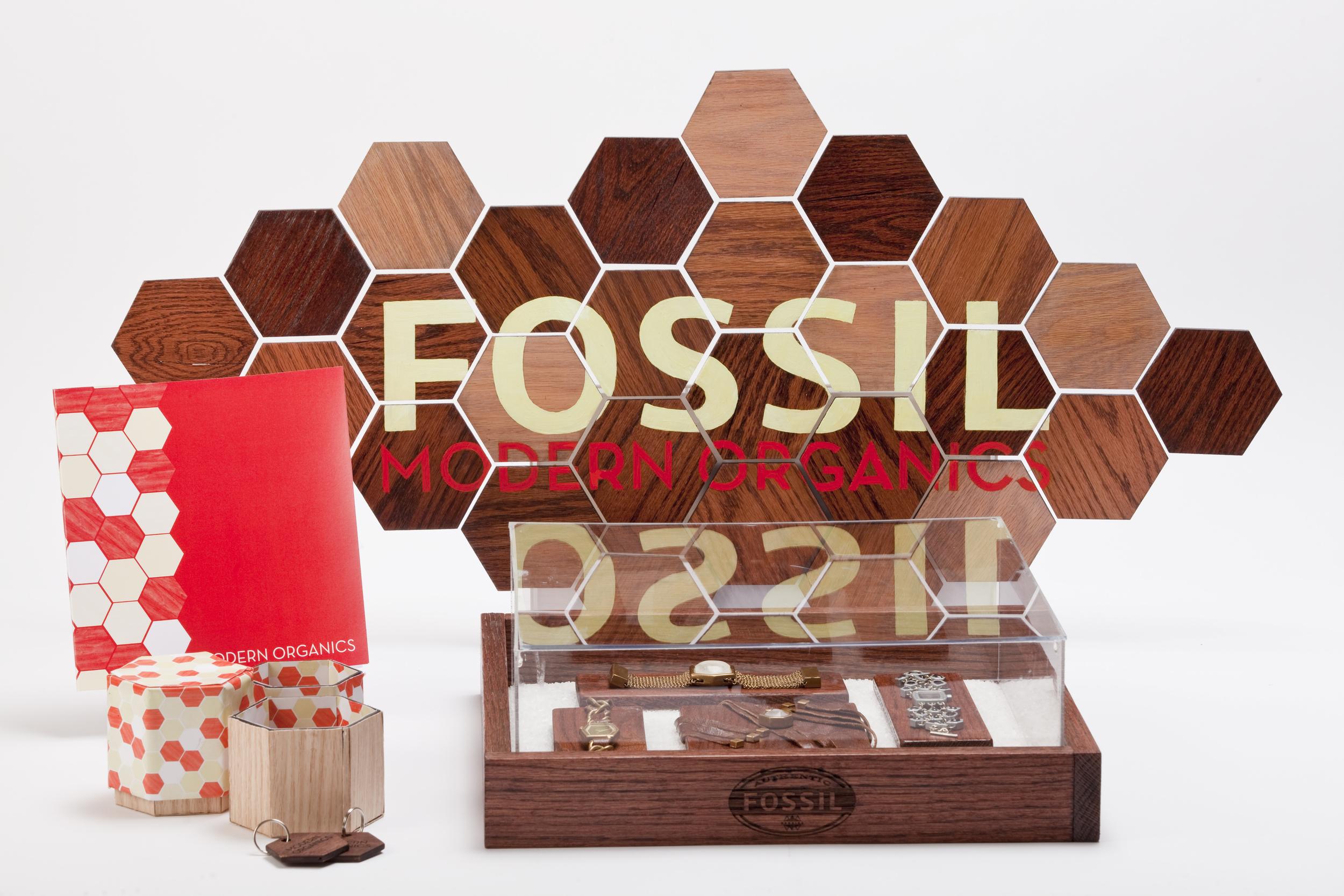FossilProject_03_DB.jpg