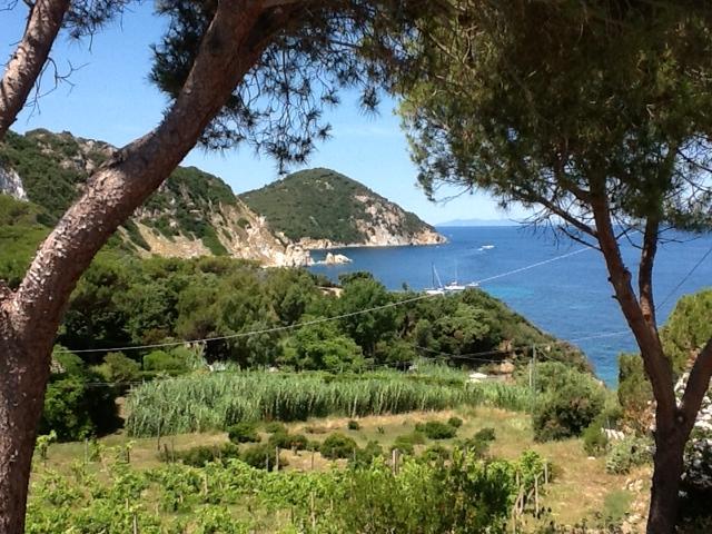 A little taste of Tuscany on the island of Elba