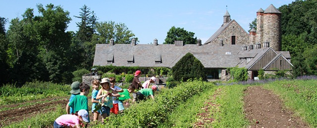 Kids camp in the vegetable farm at Blue Hill at Stone Barns. (Photo credit: Stone Barns Center)