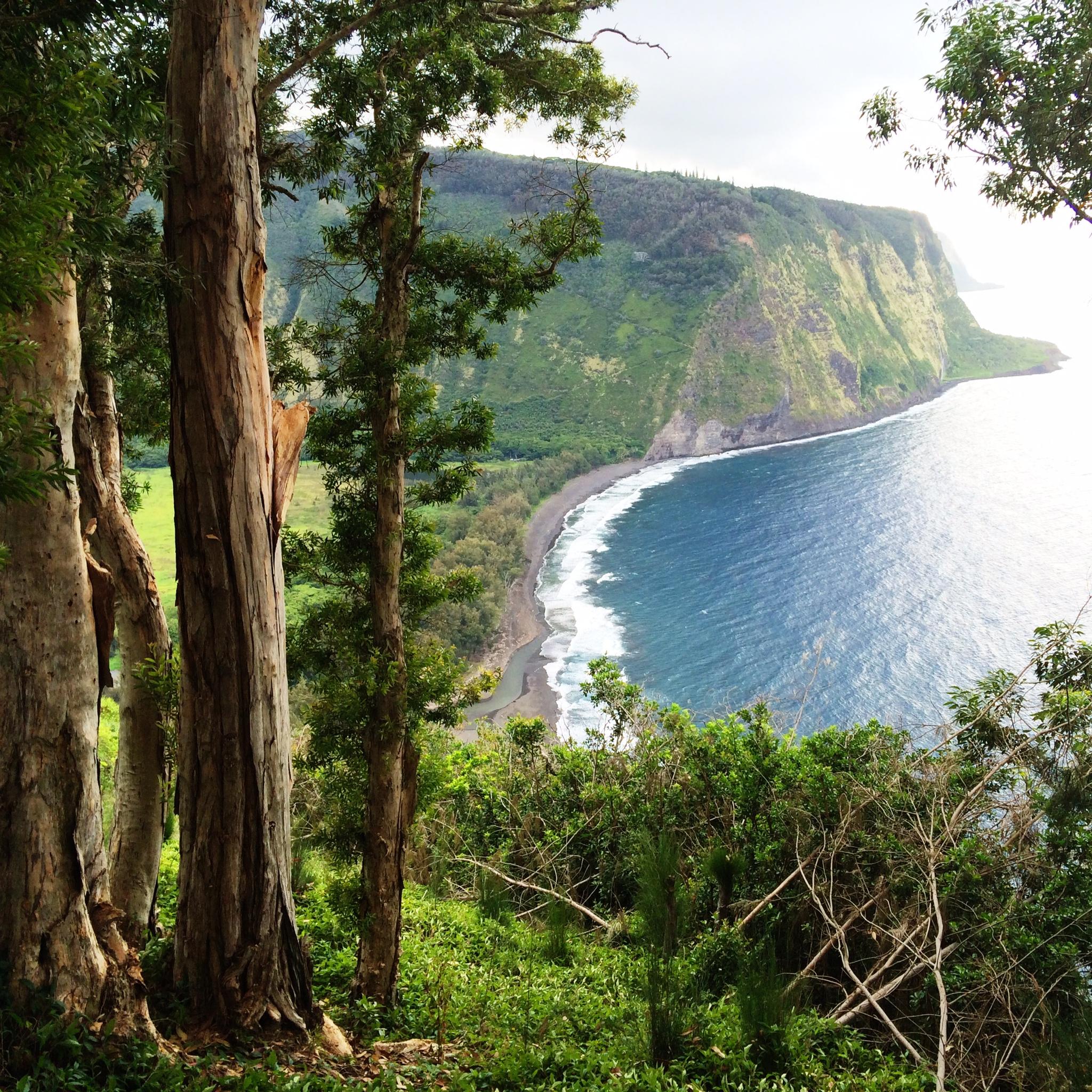 Hawaii Island hiking