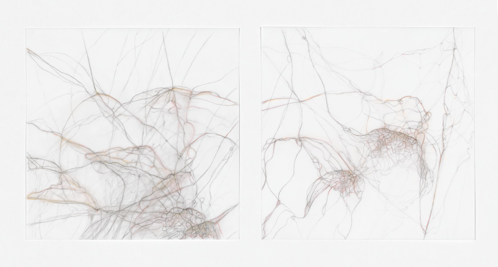 """Nancy Ivanhoe   Shadowscape,  2014  graphite and colored pencil on yupo paper   14"""" x 6.5 """"  $750"""