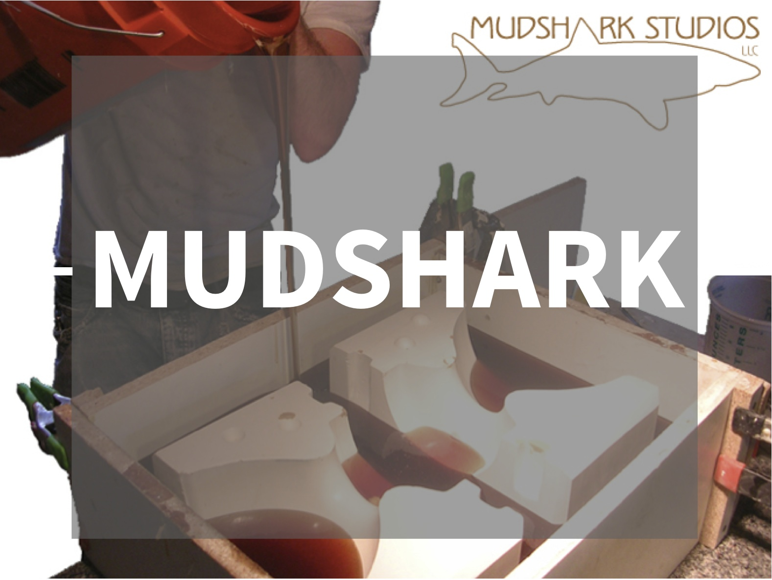 MUDSHARK.jpg