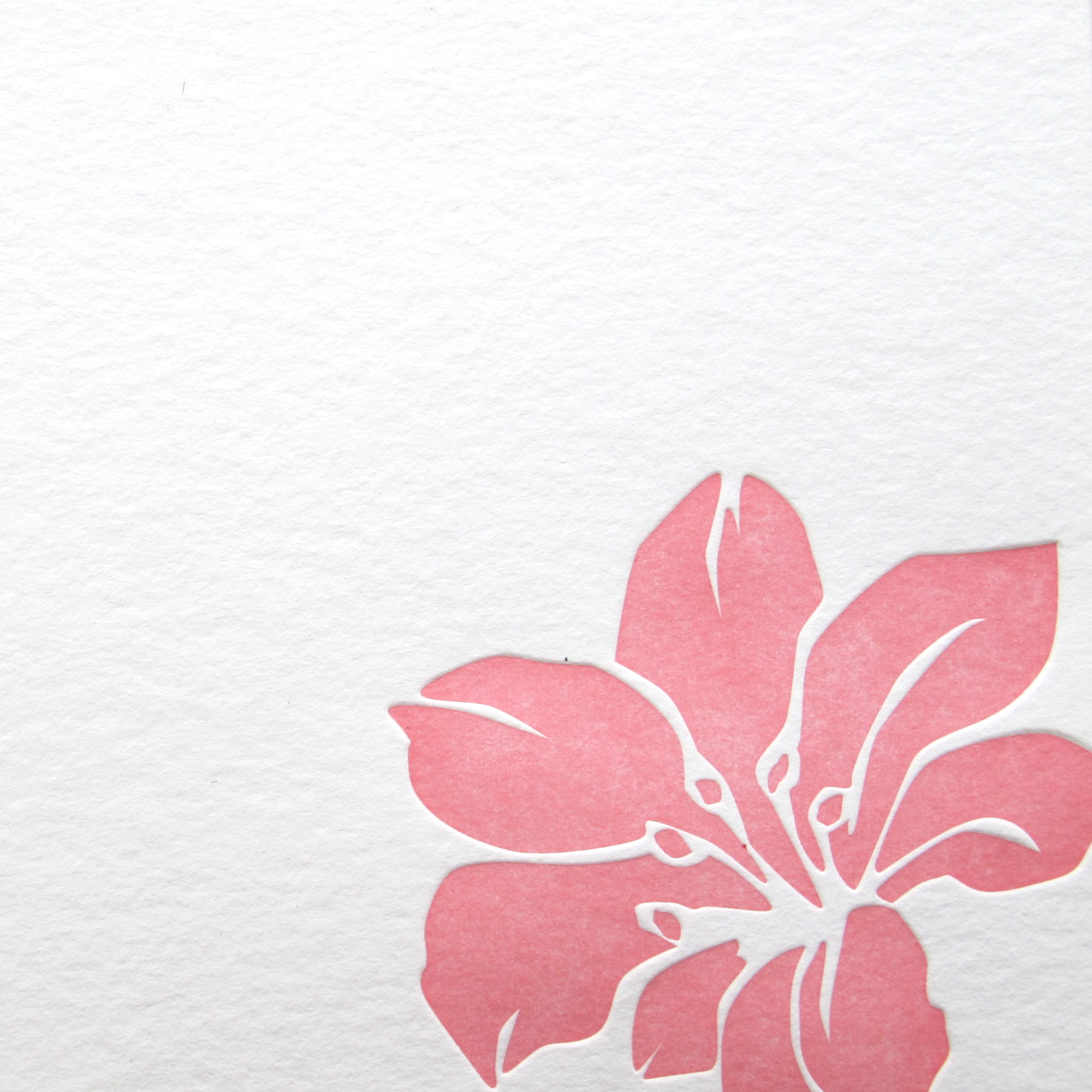stationery_hibiscus_3.jpg