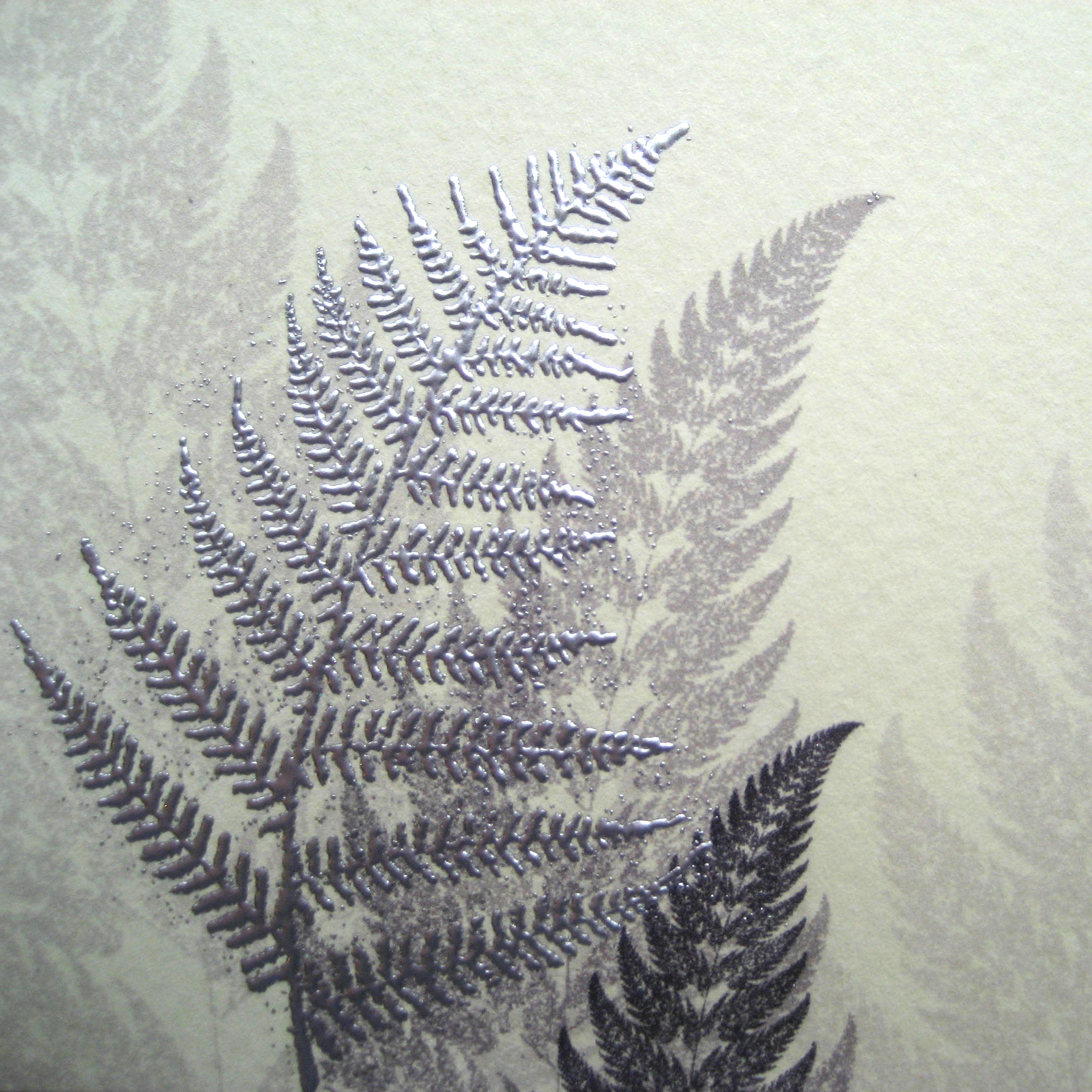 wedding_fern_3.jpg