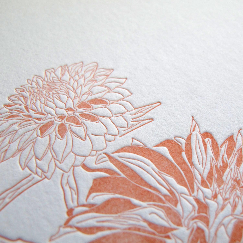 chrysanthemum_4.jpg
