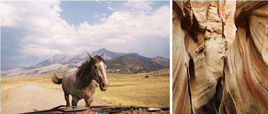 Horse_canyon1.jpg