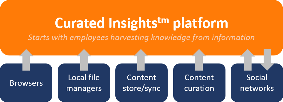 Old curated insights graphic.png
