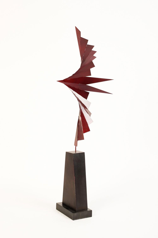 Pajaro Rojo-18