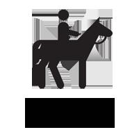 horseback-riding.png