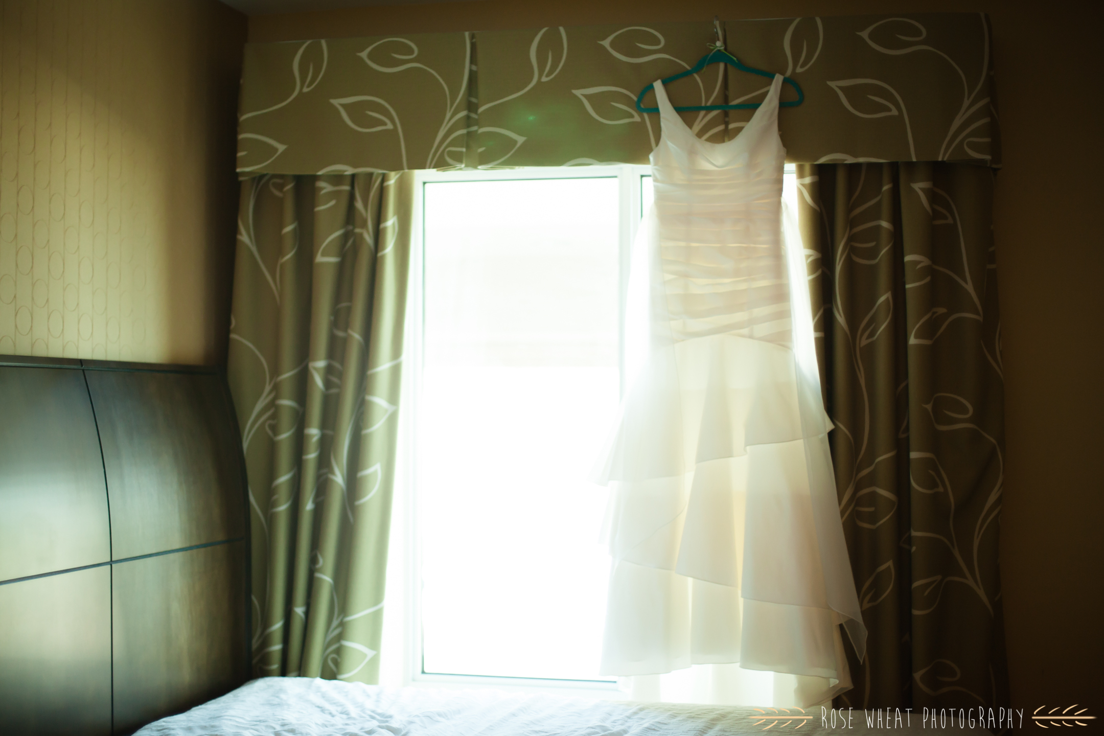 14. Davids_Bridal_wedding_dress_Hilton.jpg
