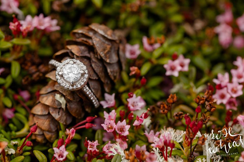 14. MURPHY_Dome_Wedding_Fairbanks_Alaska.jpg
