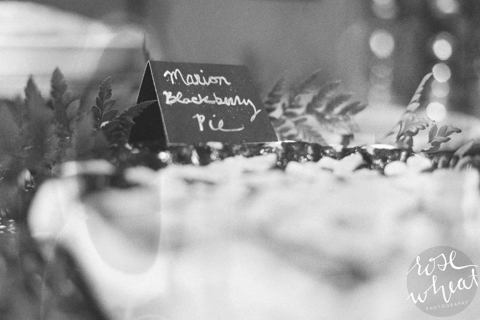 19. Fairbanks_AK_Wedding_Canon_Elan_7_Film_35mm-1.jpg