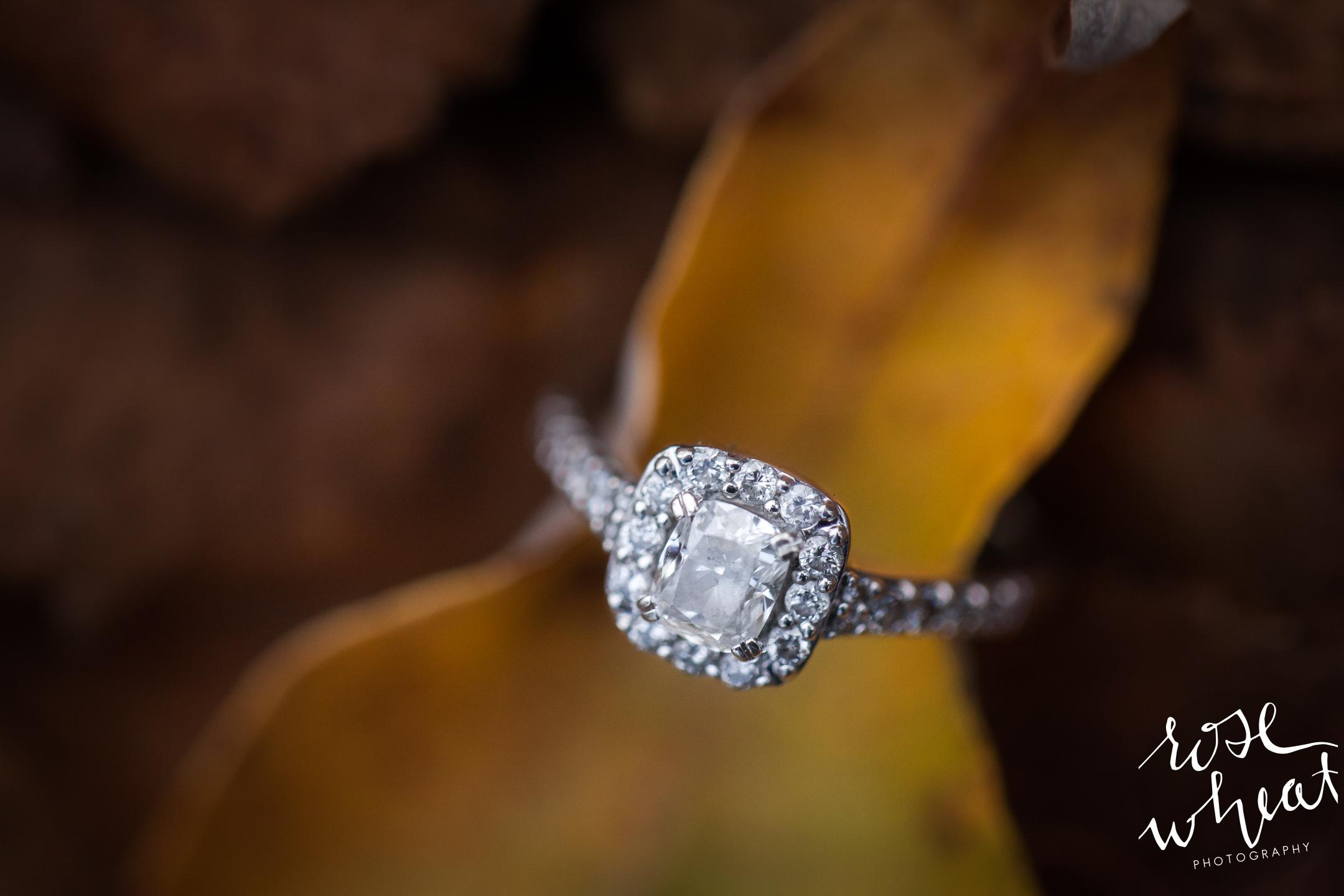 12.  Erika_Ben_Fairbanks_Birch_Hill_Engagement_Photographer_Alaska-5.jpg