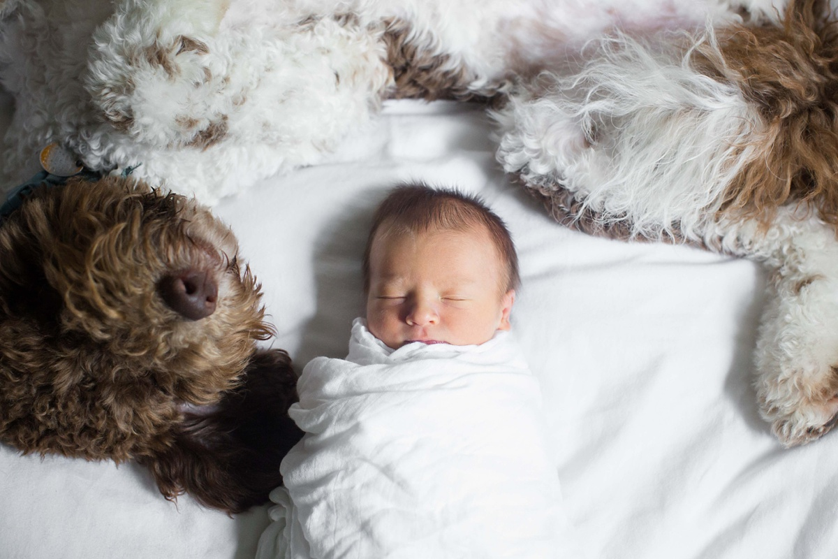 Topeka_KS_Newborn_Photographer_0003-1.jpg