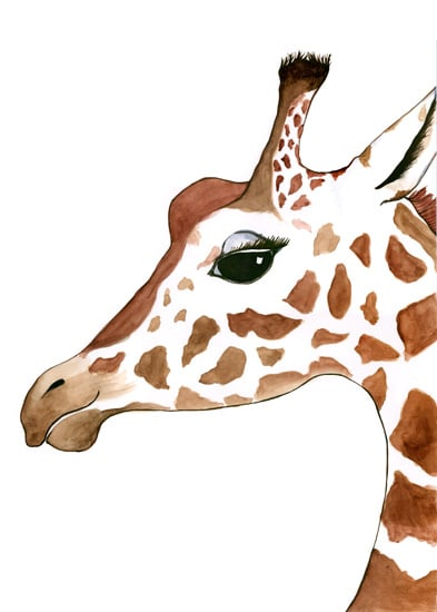 Giraffeewebsubmission.jpg