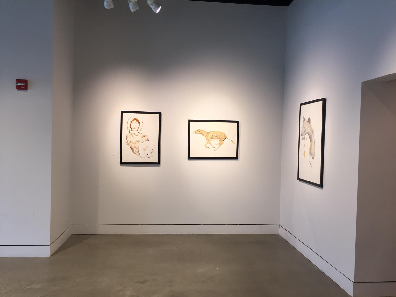 Installation view of my drawings at iMOCA
